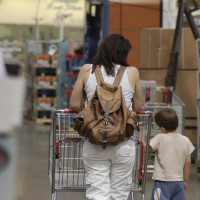 Mobile Organizing Systems for Moms on the move