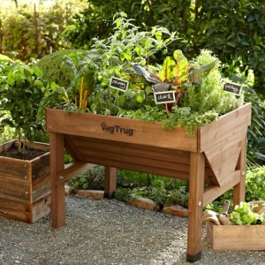 Williams Sonoma Veg Trug
