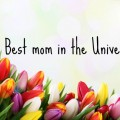 The Best Mom In the Universe