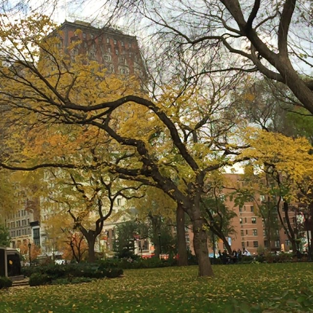 Beautiful day to walk and take in the changing leaves. #UnionSquare #manhattan