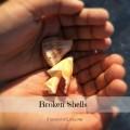 Broken Shells